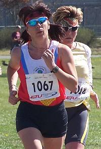 Irena Šípová
